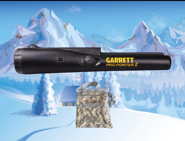 DTI Special Garrett Pro-Pointer II